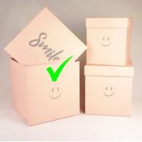 """Шляпная коробка """"Smile"""", цвет розовый, размер 21*21*21см"""